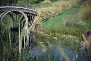 مدل چمن گیاه باغ پارک سنگ شمشاد