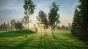 مدل سه بعدی درخت جنگل بید مجنون کاج تری دی مکس وی ری