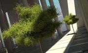 مدل سه بعدی درختان استوایی خرما شمشاد بوته تزئینی باغ گل گلدان   تری دی مکس اسکچاپ آبجکت